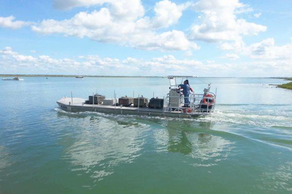 bateau ostreicole