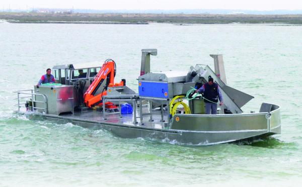 bateau pour la mytiliculture